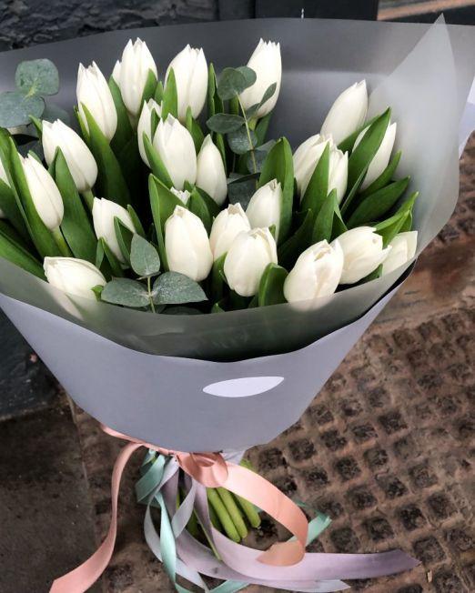 Букет сборный из 25 тюльпанов и эвкалипта 221