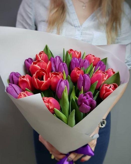 Букет сборный из 25 тюльпанов 243