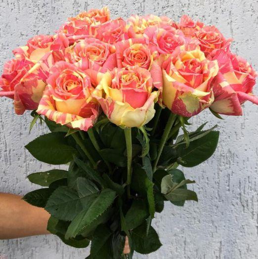 букет из 15 роз фиеста (1)