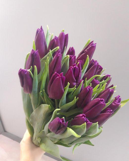 тюльпан 12 (1)