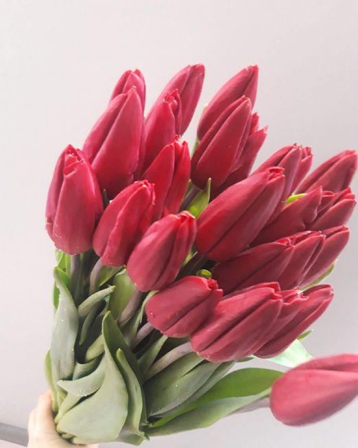 тюльпан 14 (1)