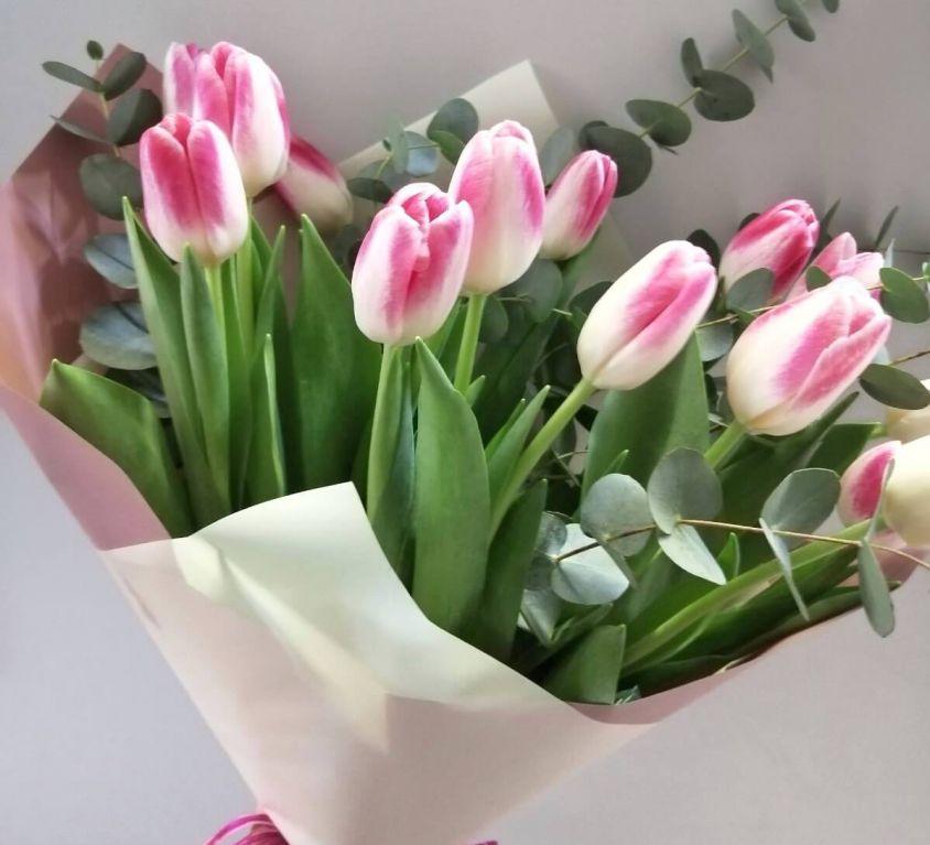 Букет сборный из 15 тюльпанов и эвкалипта 178