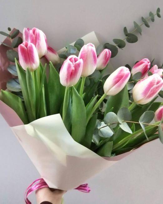 15 тюльпанов и эвкалипт