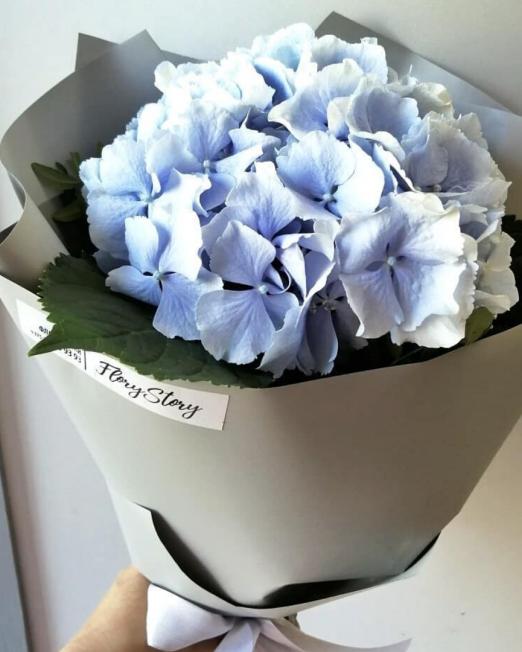 букет из голубой гортензии 2