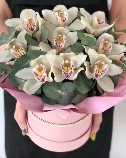 шляпняа коробка с орхидеей
