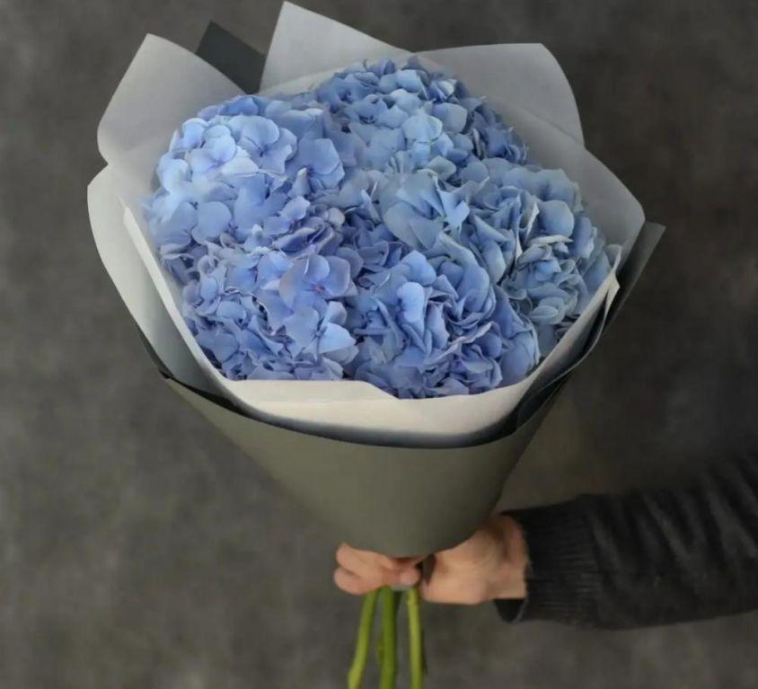 Букет из 5 голубых гортензий 581