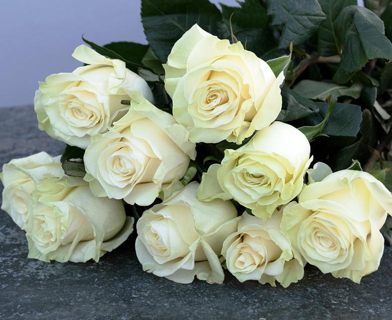Букет из 9 белых роз Мондиаль 639
