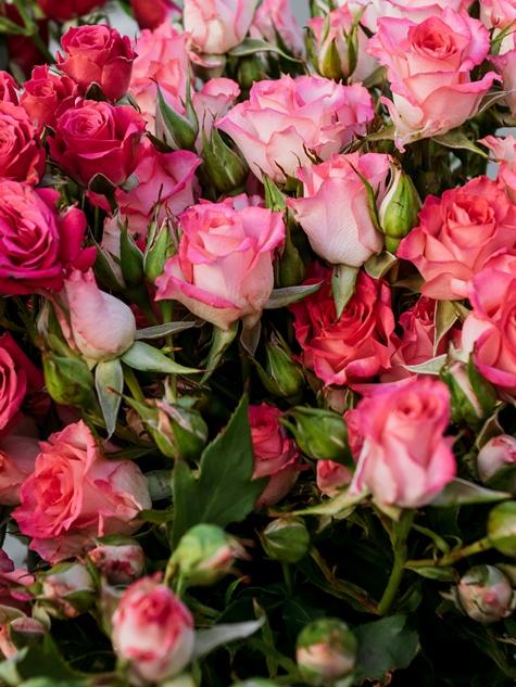 Букет из 11 кустовых роз микс 638