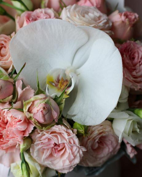 коробка с орхидеей 2